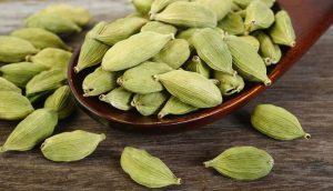 Bạch đậu khấu (cardamom)
