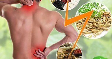 Top 7 bài thuốc đông y chữa thoát vị đĩa đệm hiệu quả!